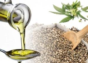 test 1 Hemp Seed Oil