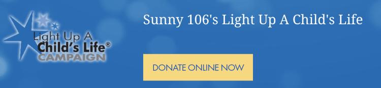 Make A Wish Online Donation Button