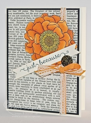 Blended Bloom with Pumpkin Pie Stampin' Blendabilities