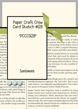 Paper Craft Crew Card Sketch 128
