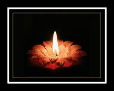 images flower candle