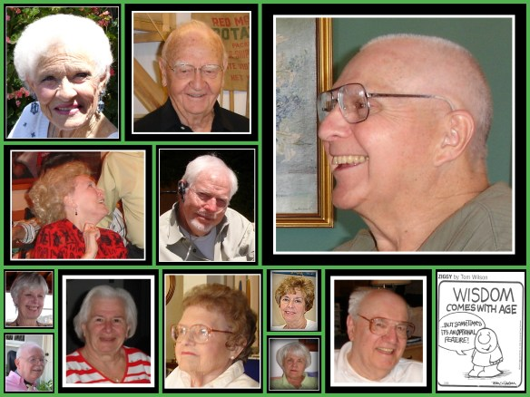 Wise elder collage