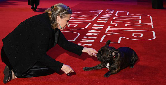 carrie fishers dog attended last jedi premier