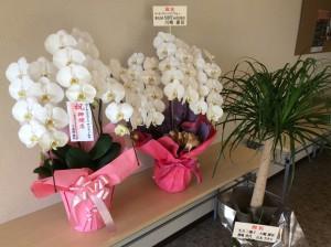香川の自習室コワーキングスペース『サンプラット』開店祝い