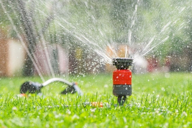 4 Common Sprinkler Head Problems and Easy Fixes