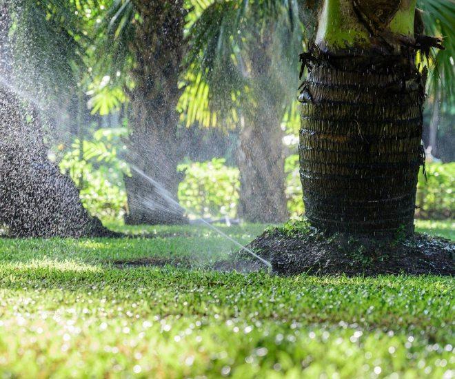 Top 10 Irrigation Challenges in Florida