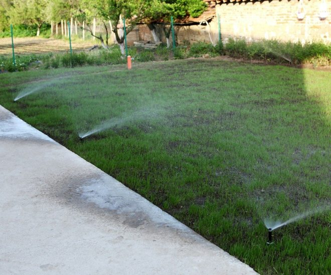 Commercial Irrigation Contractors in Tampa