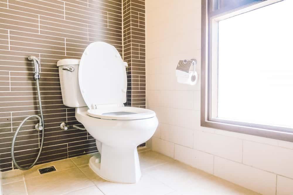 10 best upflush toilets of 2021