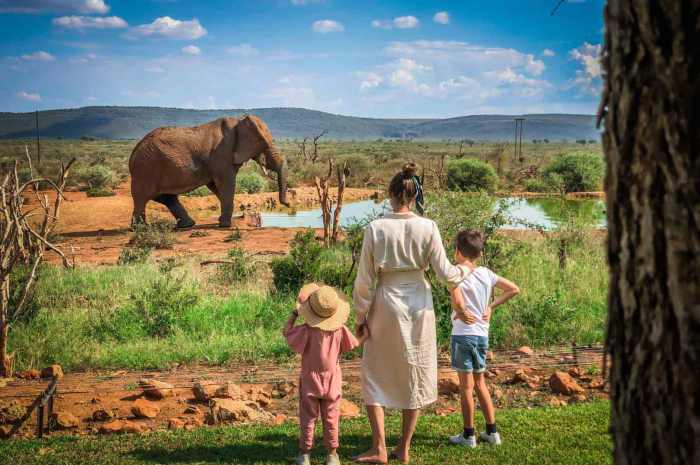 7 Days in Africa: Bespoke luxury Malaria Free African Family Safari