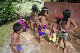 ambera-yerlileri-panama-5