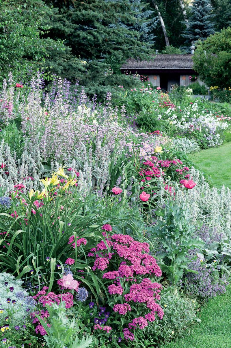 Garden Border Ideas - Sunset Magazine on Tree Planting Ideas For Backyard id=92142