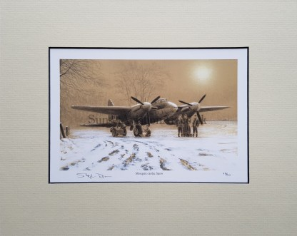 Mosquito in the Snow Pencil Drawing (Stephen Brown
