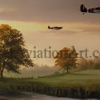 Birthday Card Spitfire Return of the Few Stephen Brown