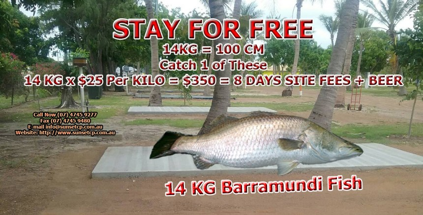 DURING SEASON Catch One Barramundi 14 KG x $25 Per Kilo = $350 = 8 DAYS SITE FEE + BEER Karumba Point Sunset Caravan Park Welcome To Carpentaria