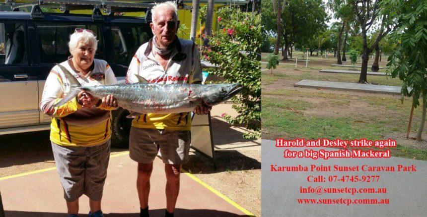Harold-and-Desley-Strike-Again-For-A-Big-Spanish-Mackeral