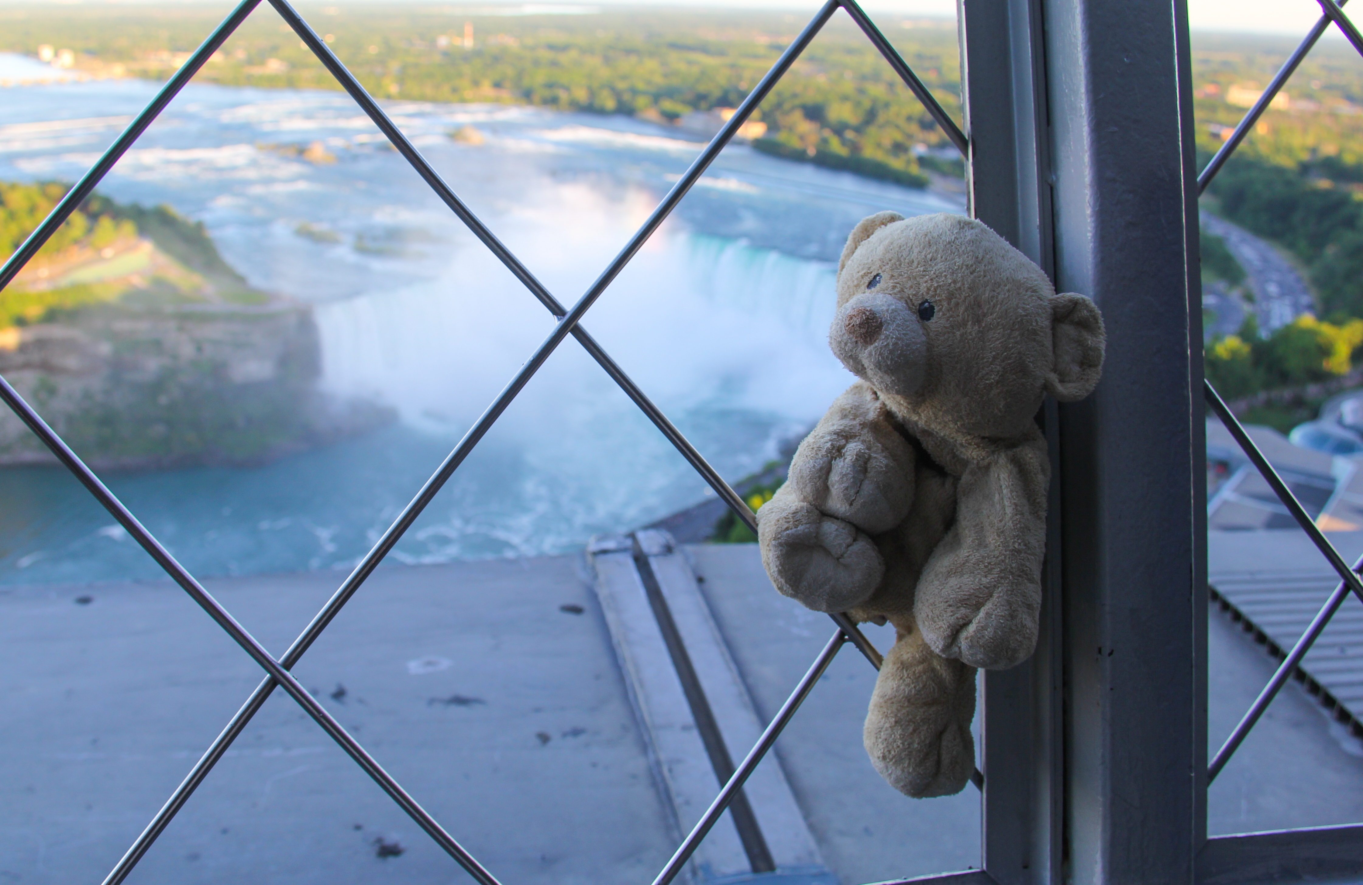 View of the falls from Skylon Tower.