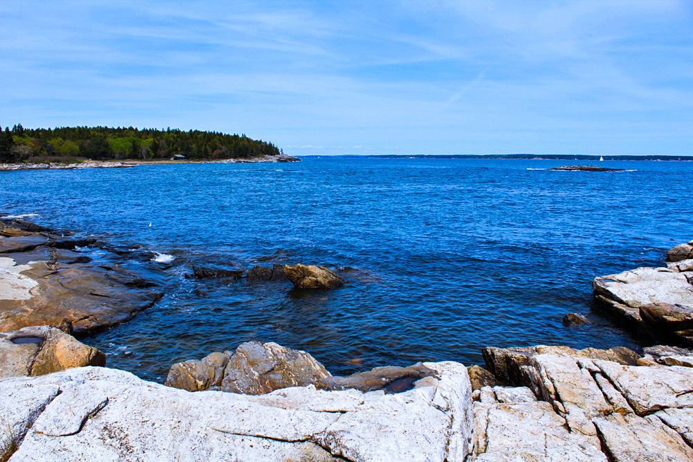11.5 x 14: Coast of Maine