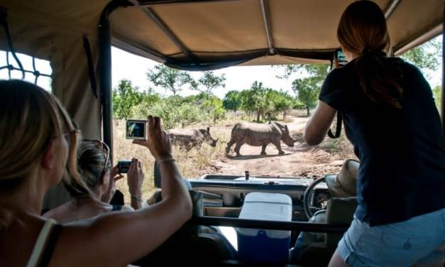 Ngorongoro Crater Highland Trekking, 8 Days