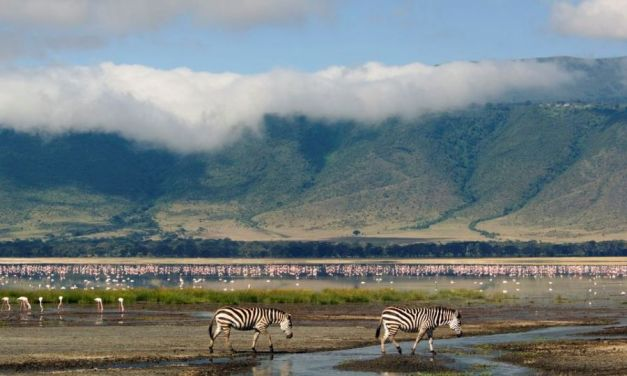 Ngorongoro Conservation Area(NCA)