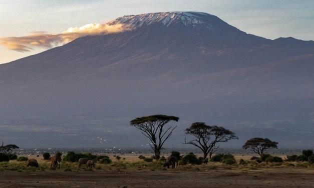 2 Day Kenya Safari to Amboseli-Tsavo West