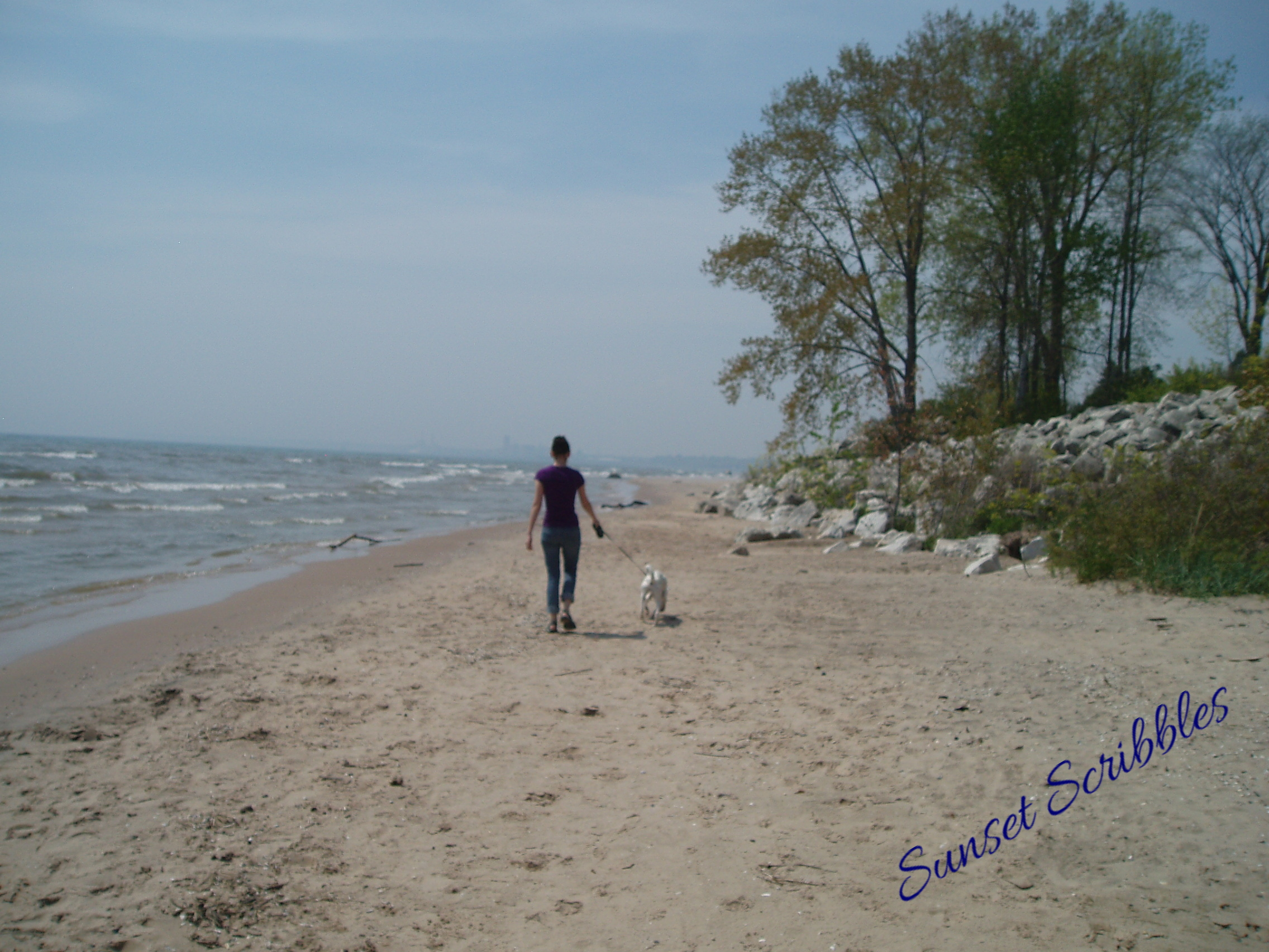 Where Can I Take My Dog To The Beach Wisconsin