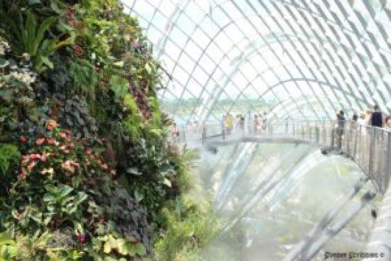Singapore - Cloud Forest