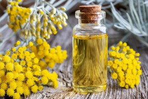 A bottle of helichrysum essential oil with fresh blooming helichrysum italicum