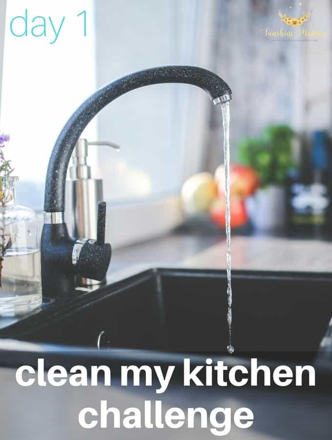 Clean My Kitchen Challenge (Day 1)