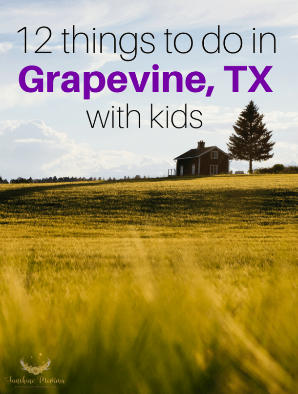 12 things to do with kids in Grapevine, TX