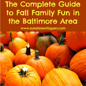 The Complete Guide to Fall Family Fun in Maryland