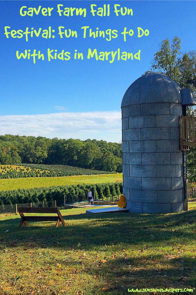 fun things to do with kids in maryland: gaver farm