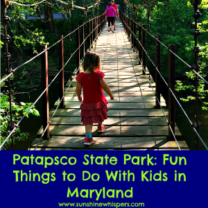 Patapsco Valley State Park: Fun Things to Do With Kids in Maryland