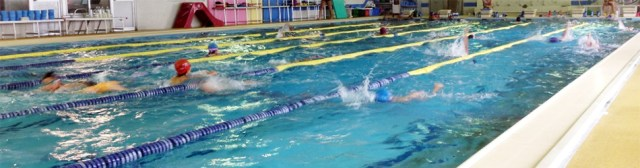 競泳チーム
