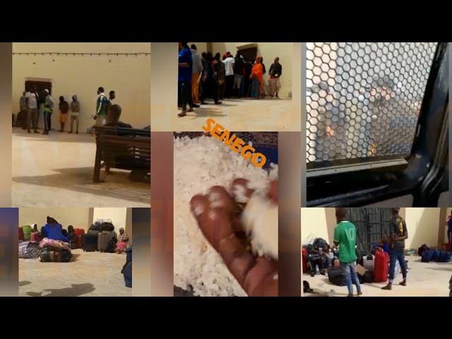 Frontière Maroc-Sénégal : En route pour la Tabaski, des Sénégalais bloqués et emprisonnés (Vidéo)ParAnkou Sodjago 15/07/2021 à 21:06
