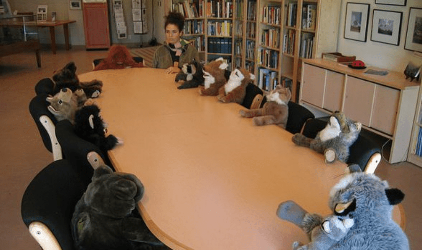 Codependency and Entrepreneur Meeting with Stuffed Animals