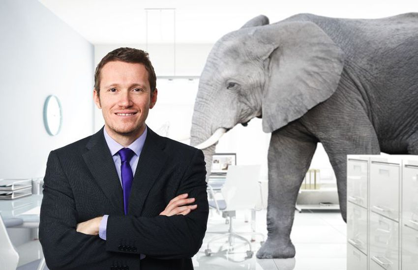 The Elephant in the Room - Setting Up New Salesperson for Failure