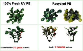 fresh-pe-artificial-boxwood-with-recycled-boxwood