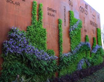 Company Culture plants Wall