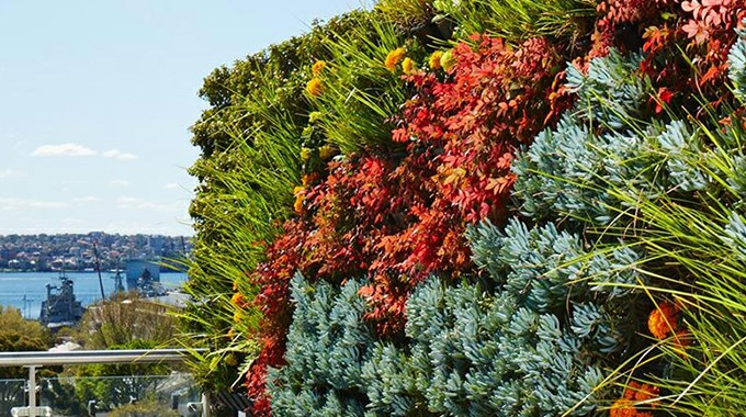 Whether artificial or living green walls
