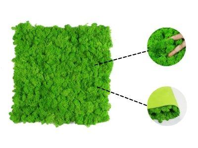 Moss wall mat