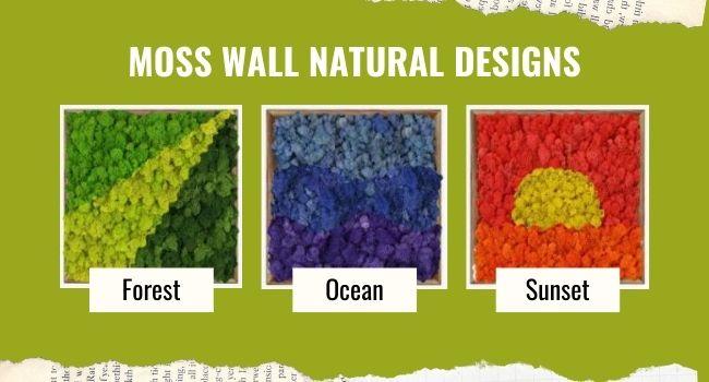 Moss wall natural design