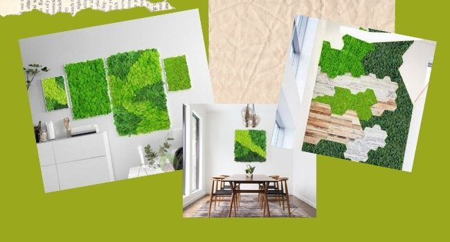Reindeer Moss Wall with Design Pattern