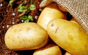 ジャガイモのビタミンCはミカンと同等!そして熱に強い!