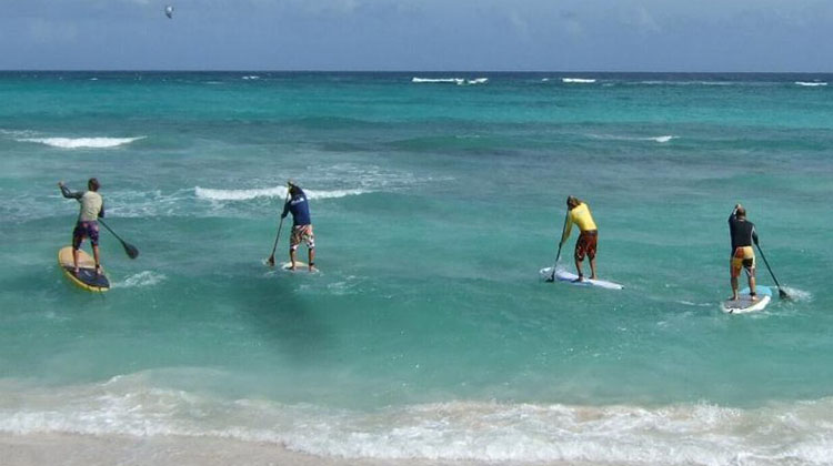 The Ultimate Guide To Buying Your First Sup