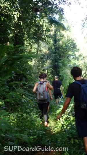 Bali Jungle Hike