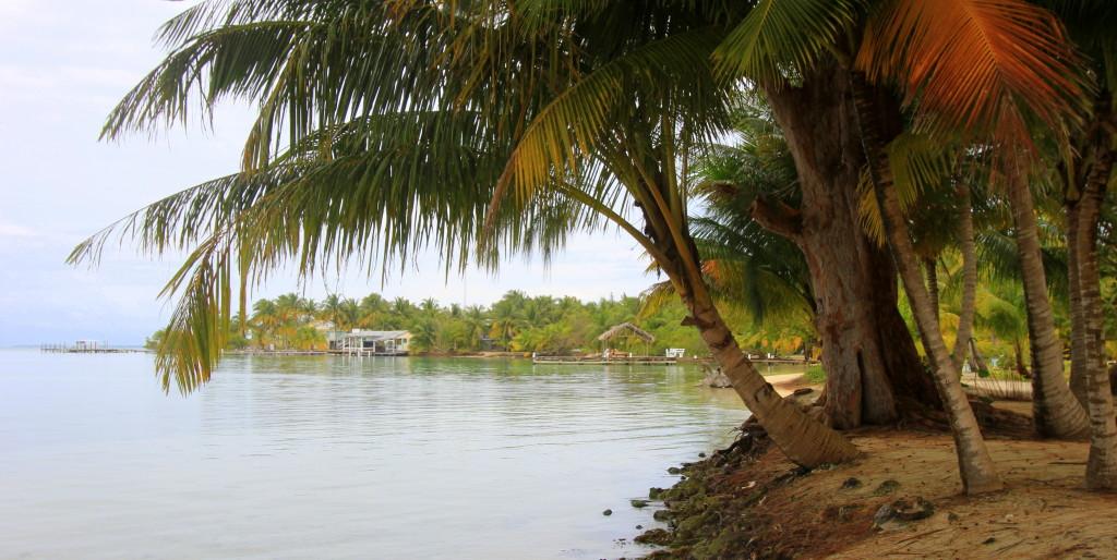 South Water Caye beach