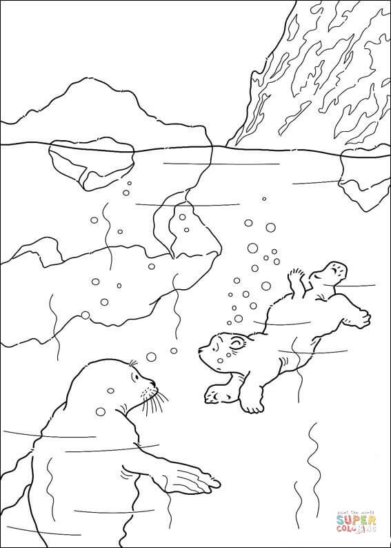 arctic habitat clip art