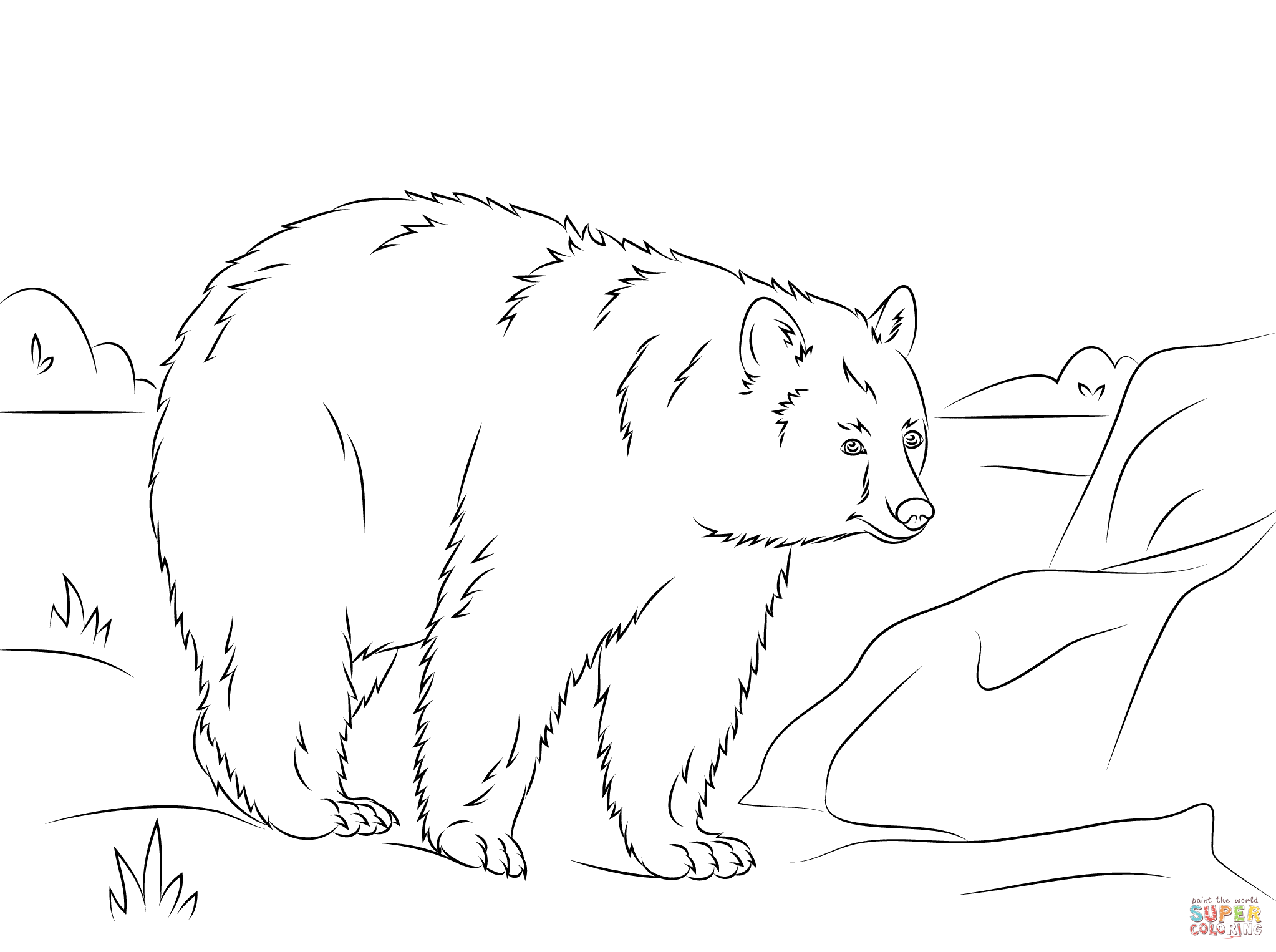 Walking American Black Bear Coloring Page