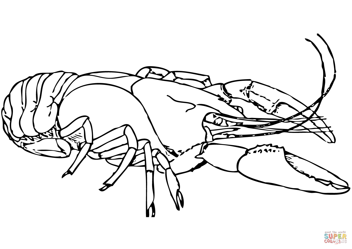 American Lobster Coloring Page