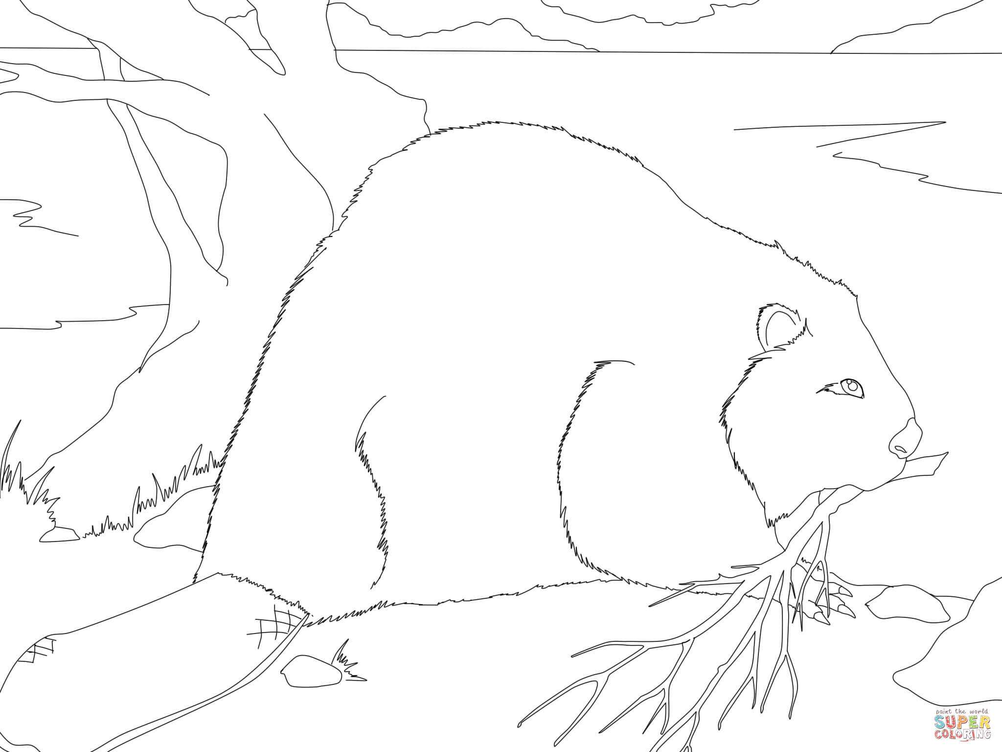 Beaver Building A Dam Coloring Page